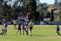 Black Diamond AFL Plate  - Warners Bay v Killarney Vale - Elimin