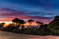 Colourful Dawn Landscape with Trees and the Sea in the Backgroun