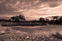 Australian Bush Sunset with Tessellated Rock in Sepia
