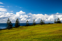 Headland lookout with tree lined sweeping views over the sea