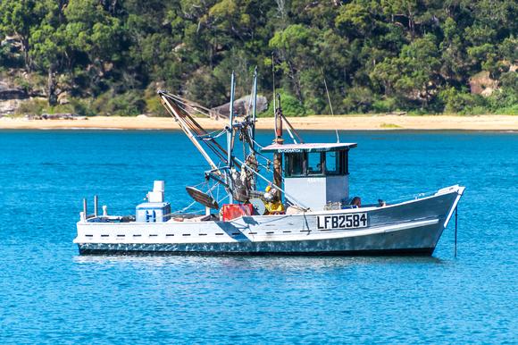 One of the Fishing fleet at Patonga