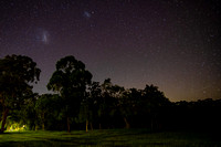 Parklands and woods under the Night Sky with Magellanic Clouds