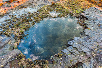 Rock Pool at the Seaside